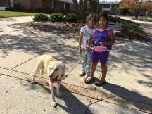 The girls took turns walking Nathaniel in the shelters courtyard. Not quite sure who was happier about it, the girls - or Nate!